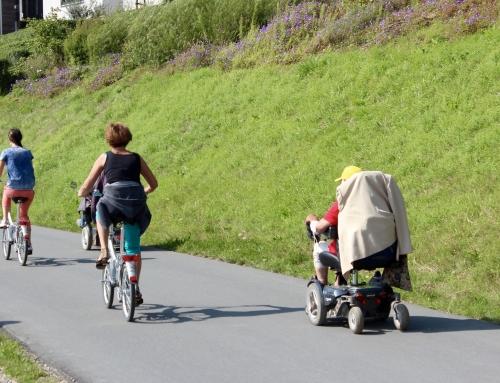 Pflegestufe Mobilität